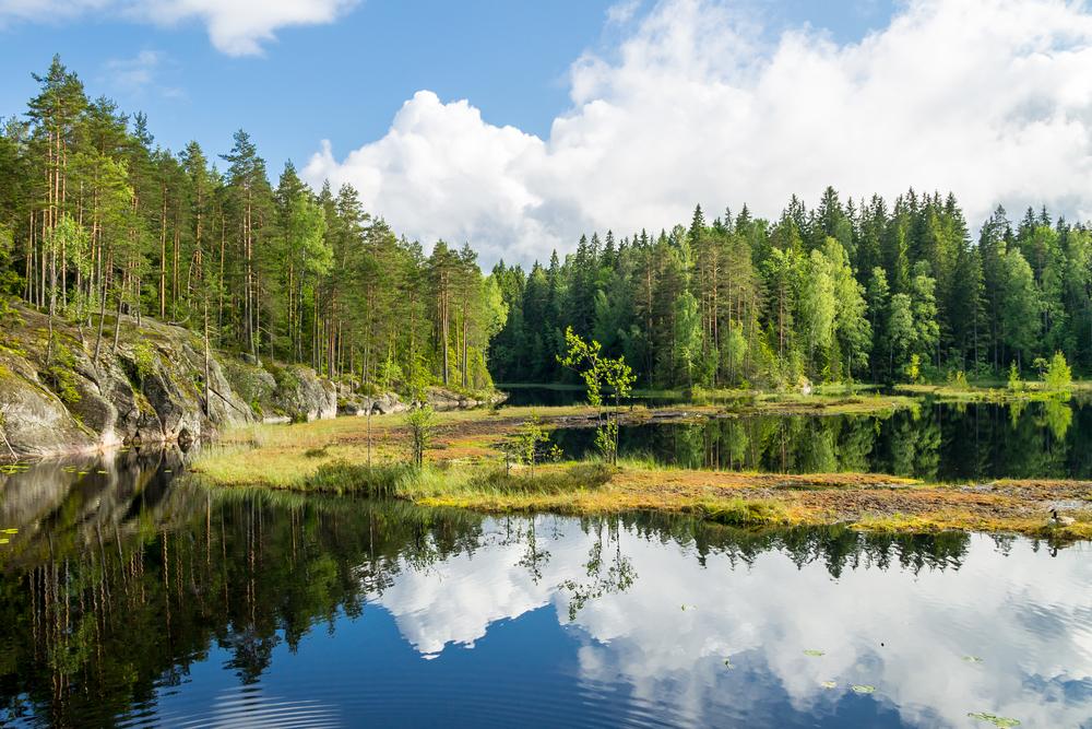 Park narodowy Nuuksio w Finlandii